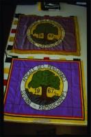 22_oldandnewflag.jpg