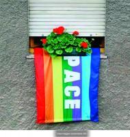 28_peaceflag.jpg