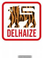 39_delhaizelionbanner.jpg